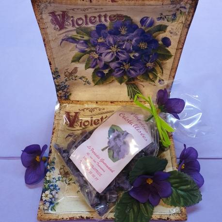 Violettes et plateau